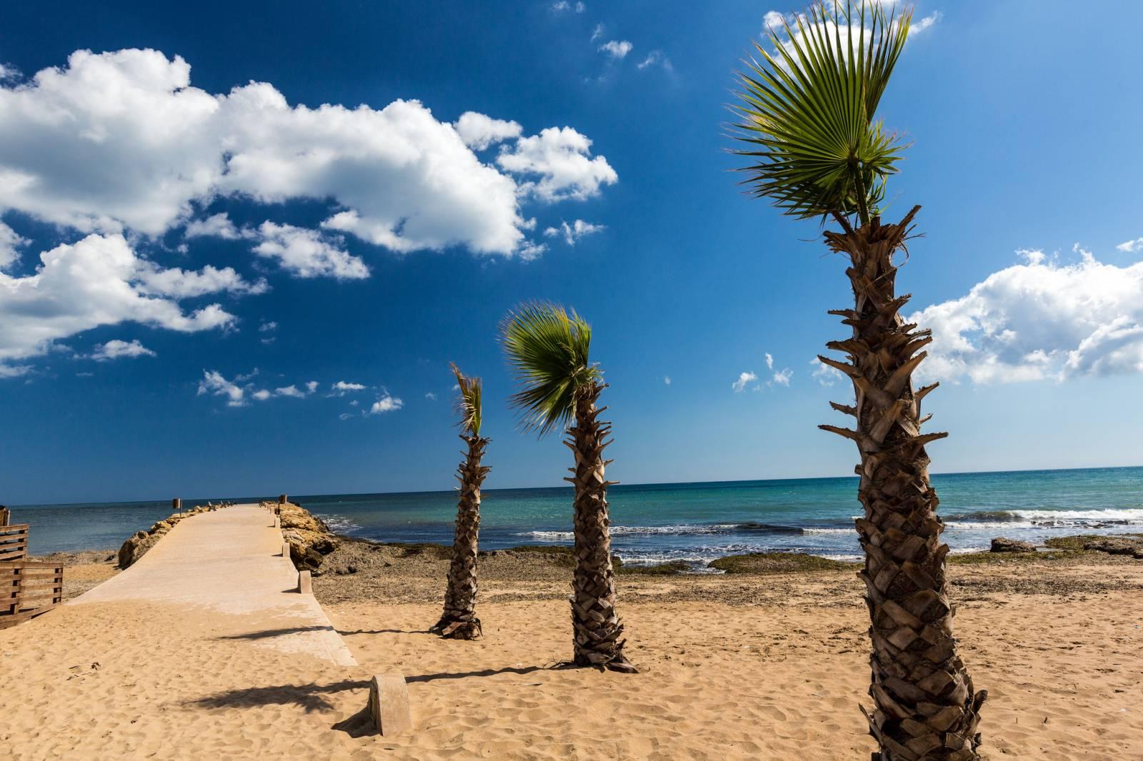 Le spiagge pi belle della sicilia province di palermo e for Foto di zig e sharko
