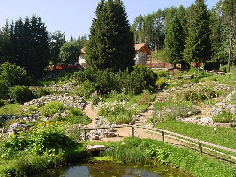 Dieci giardini botanici sulle alpi for Giardino botanico milano