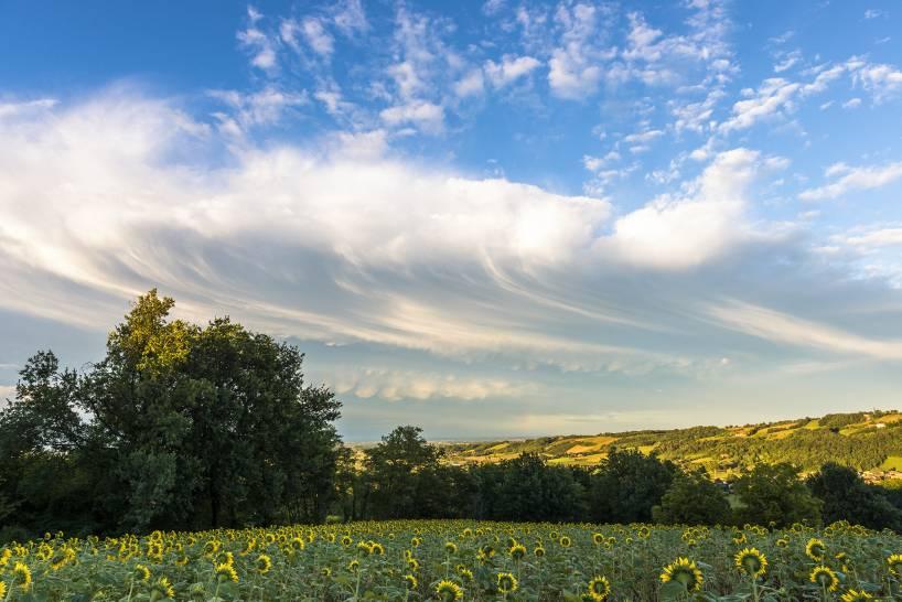 Gelosia di nuvole