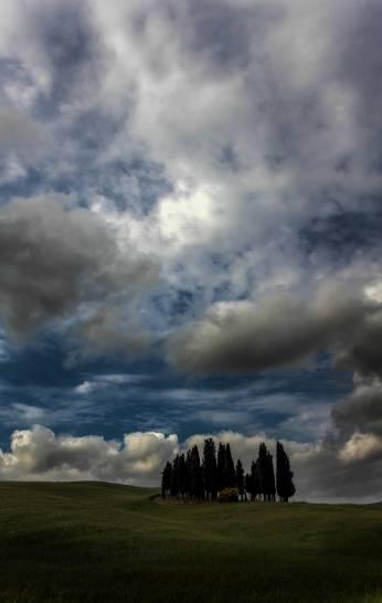 i cipressini sotto un cielo minaccioso