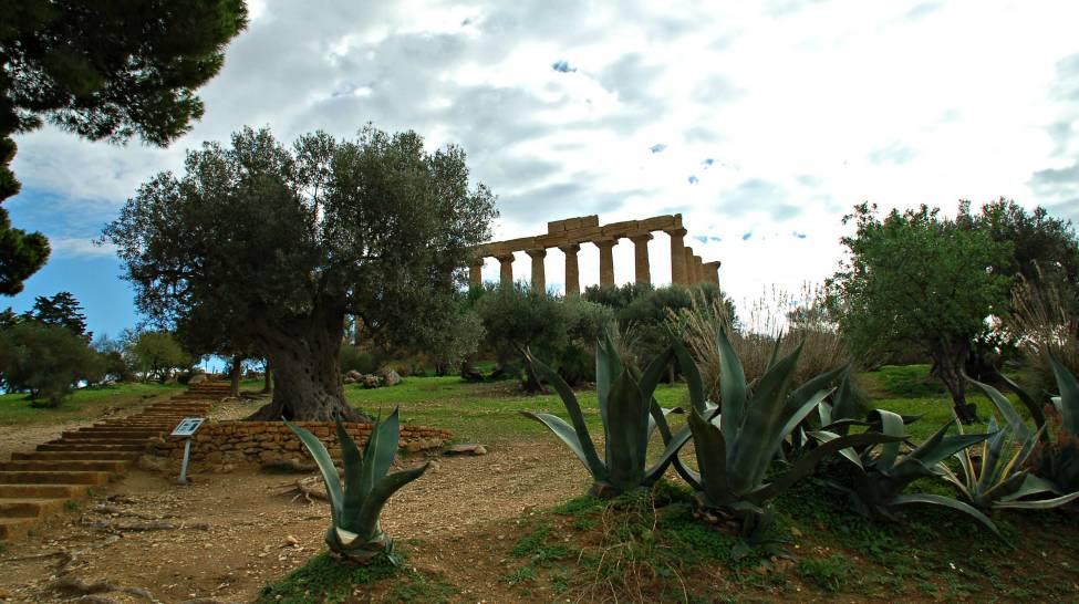 ,Agrigento