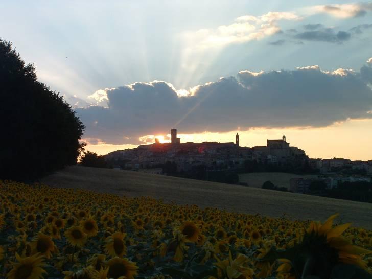Potenza Picena-Tramonto in fiore