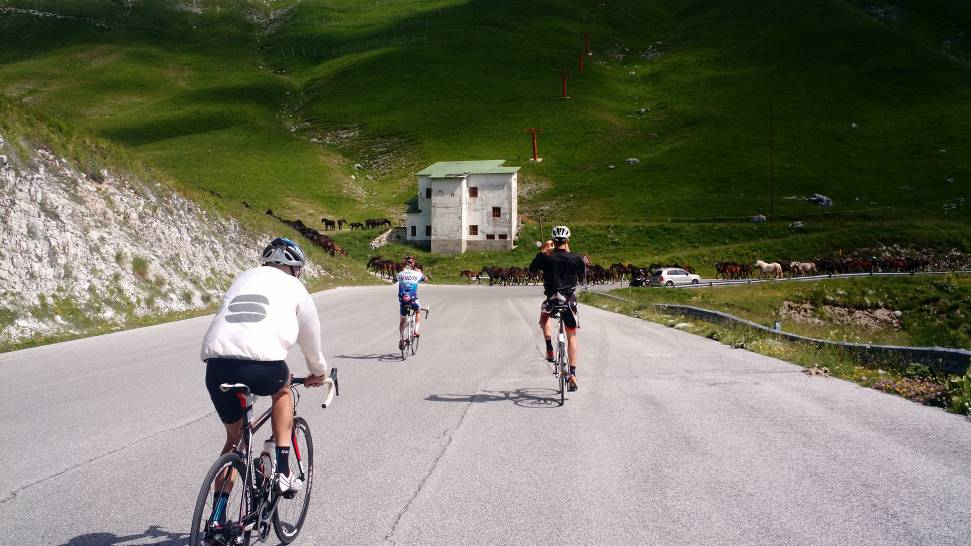 Social ciclismo