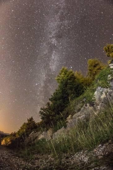 Trentino Stars