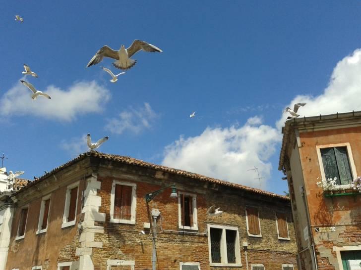 Nei cieli di Murano ...