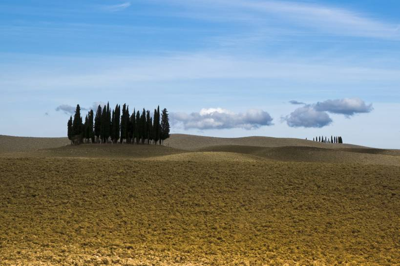 Autunno in Val D'orcia