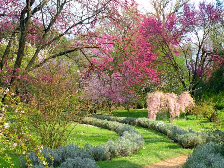 Ecco i due parchi pi belli d 39 italia del 2015 - Il giardino di ausonia ...