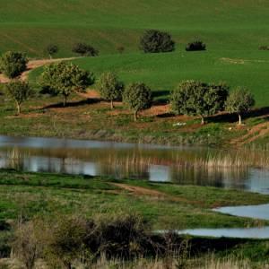 A piedi sull'Israel National Trail: quarta parte, Giudea meridionale