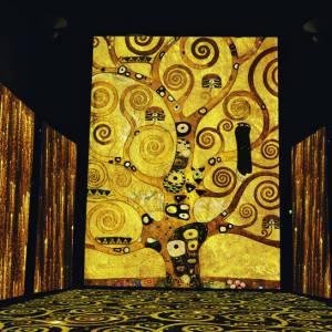 """Klimt Experience, a Milano la """"non mostra"""" dell'estate"""
