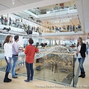 Trentino: quattro musei da non perdere