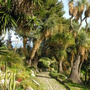 Idea weekend: i Giardini Hanbury e il sito dei Balzi Rossi, in Liguria