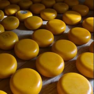 In Olanda, nelle città del formaggio: itinerario tra Gouda e Woerden