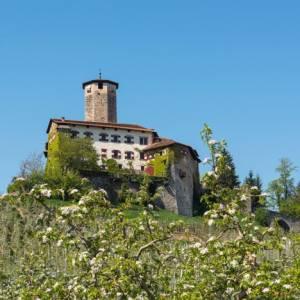 In treno, fra i castelli storici del Trentino