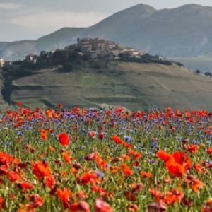 Che cosa fare il weekend del 25-26 giugno in tutta Italia