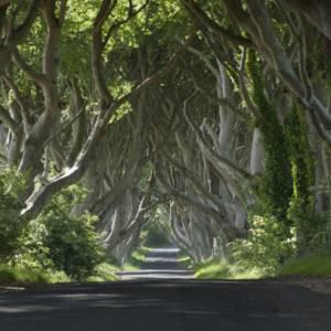 Appassionati de Il Trono di spade? Ecco perché andare in Irlanda del Nord