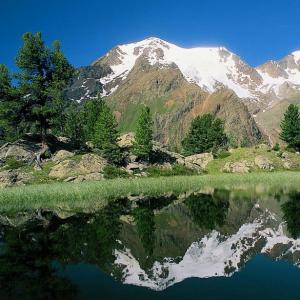 Parco nazionale dello Stelvio: nasce l'Osservatorio. Tci in prima fila