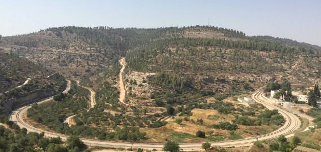Bandiere arancioni in Palestina: il racconto di un progetto