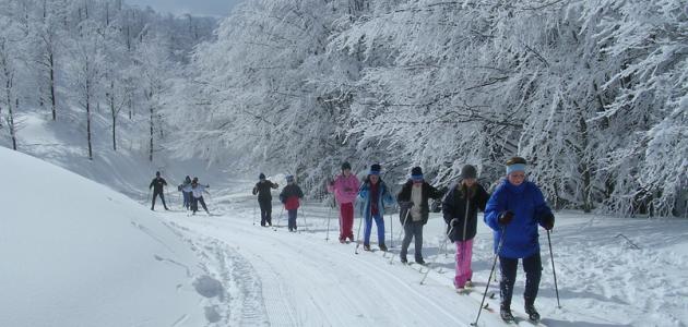 Montagne d'inverno: sulla neve in sicurezza