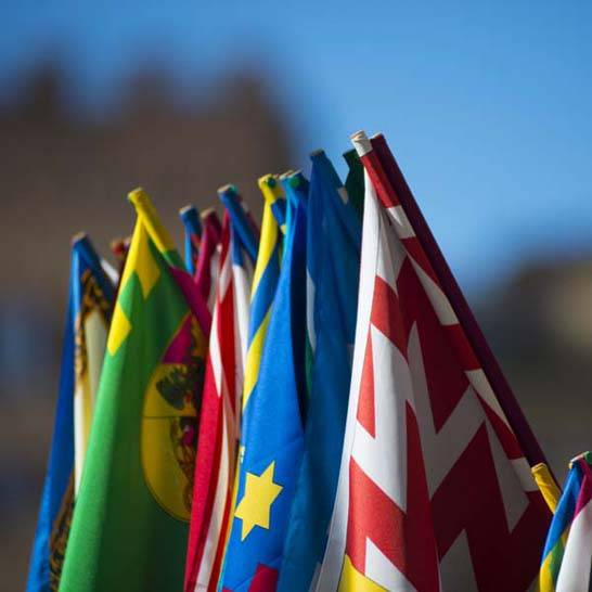 Palio di Siena - La bandiere