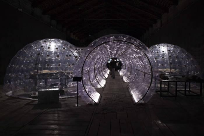 che cosa vedere alla biennale di venezia
