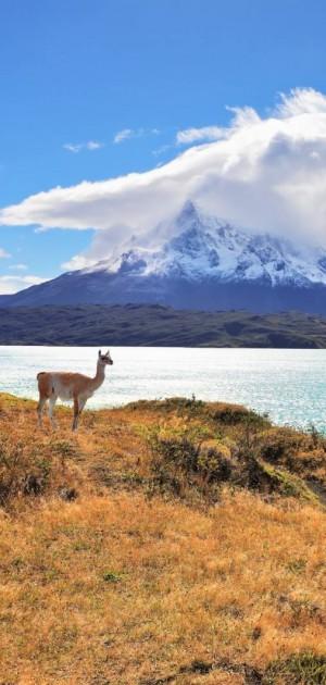 Che cosa fare in Cile: dieci foto che vi faranno venir voglia di partire