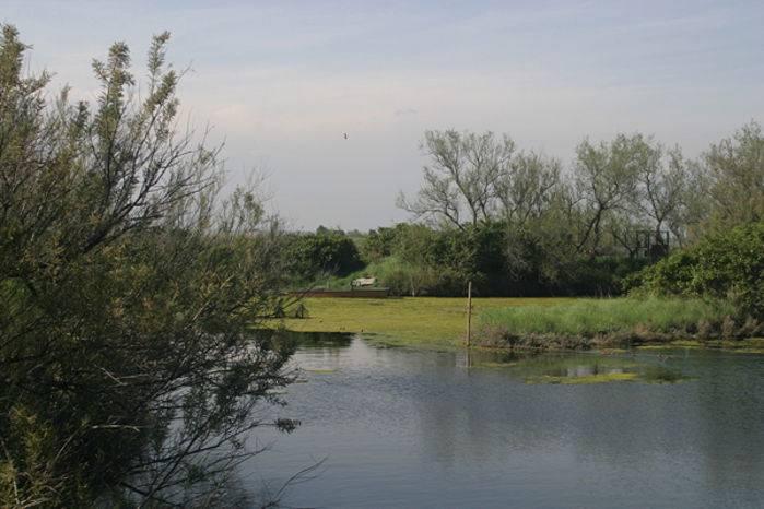 Una vista della laguna.