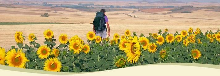 Camminare per scoprire il senso del viaggio