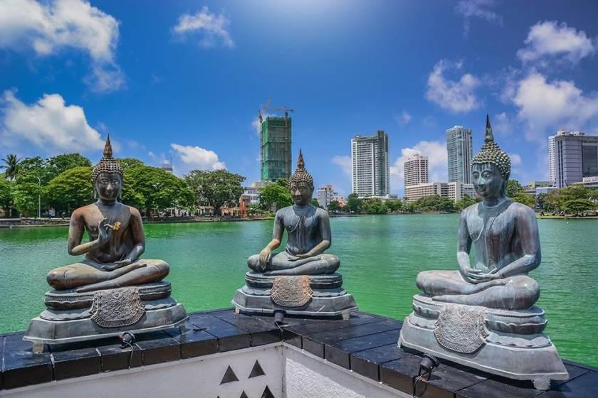 Sri Lanka - Giardino di spezie dal 20 al 30 gennaio