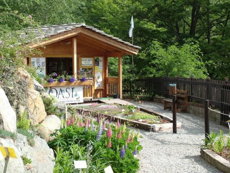 Dieci giardini botanici sulle alpi for Immagini di piccoli giardini