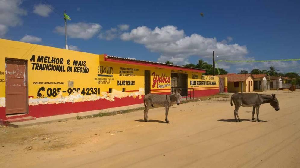 Palmeira, Brazil
