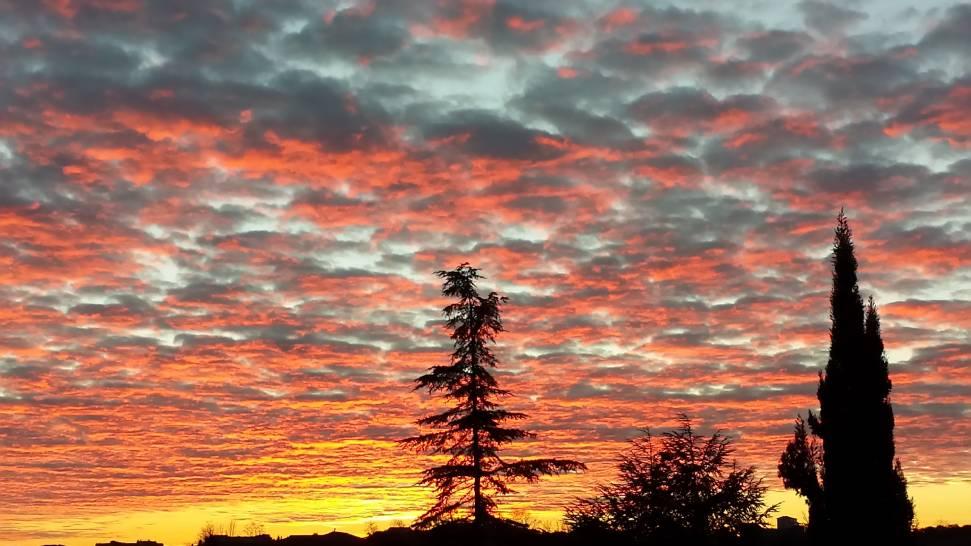Il cielo di Siena
