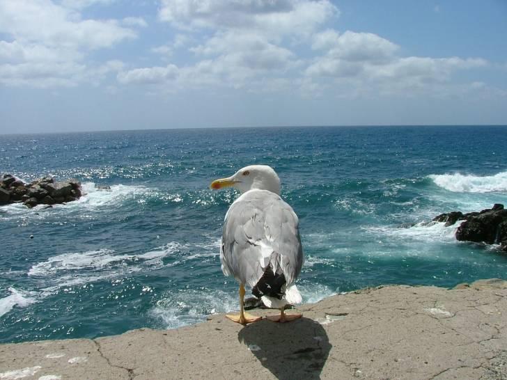 Cielo e mare a Riomaggiore Sp