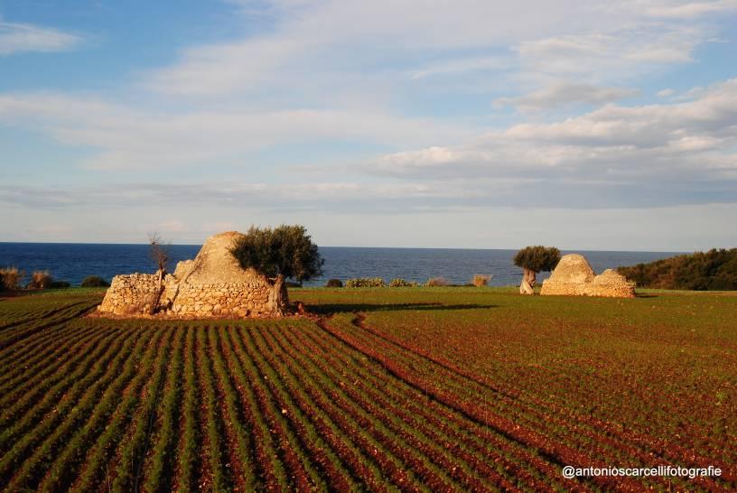 I colori della Puglia