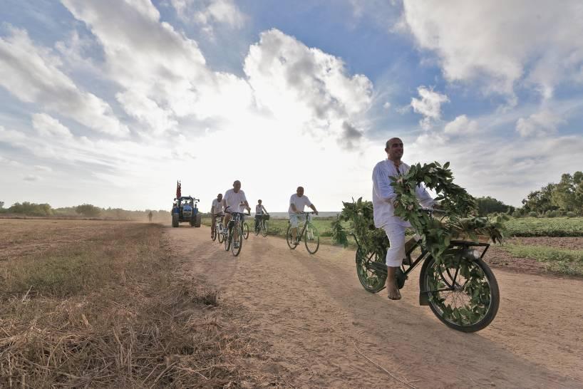 Bicicletta e tradizione