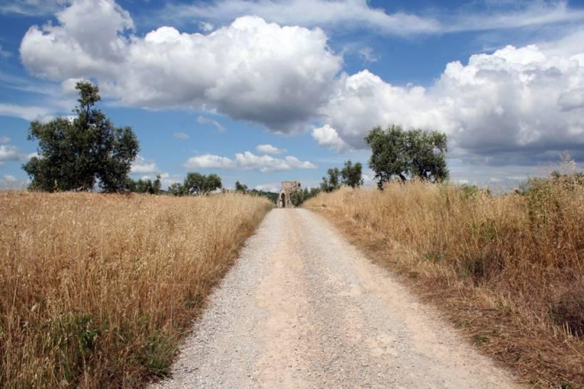 San Bruzio - Magliano in Toscana