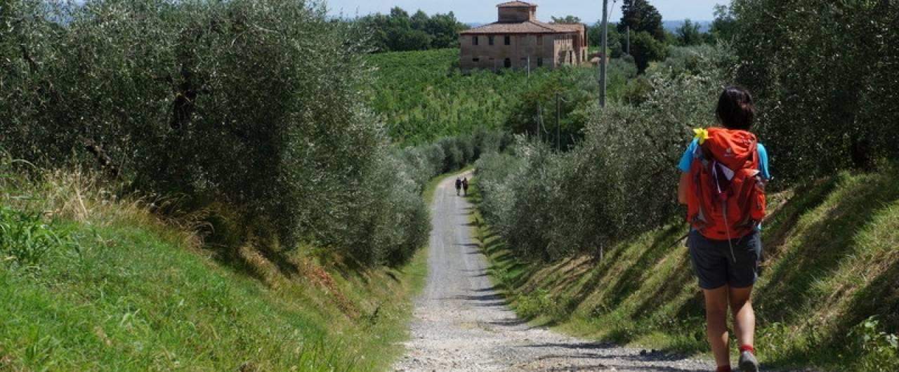 Camminafrancigena in Toscana. Le tappe 27, 28, 29 e 30