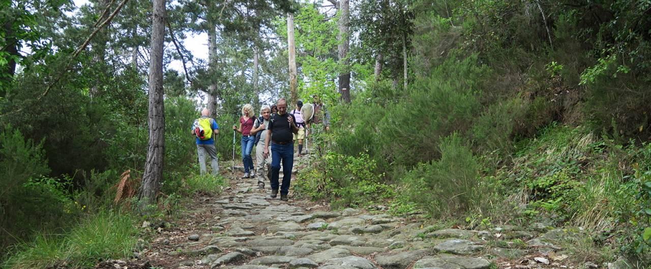 Dieci passeggiate facili in Piemonte