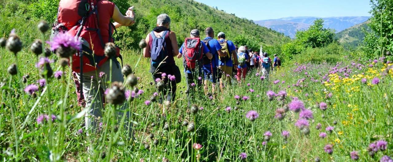 Il Cammino nelle Terre-Mutate: 14 giorni a piedi o in bici nel cuore dell'Appennino