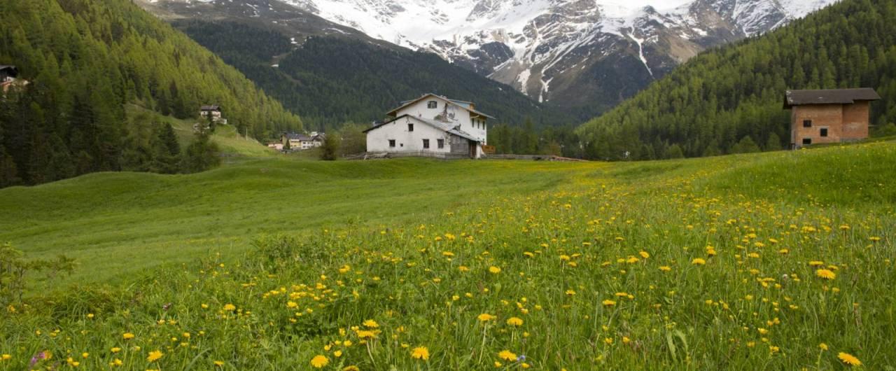 L'incanto del Parco nazionale dello Stelvio tra itinerari slow e trekking spettacolari
