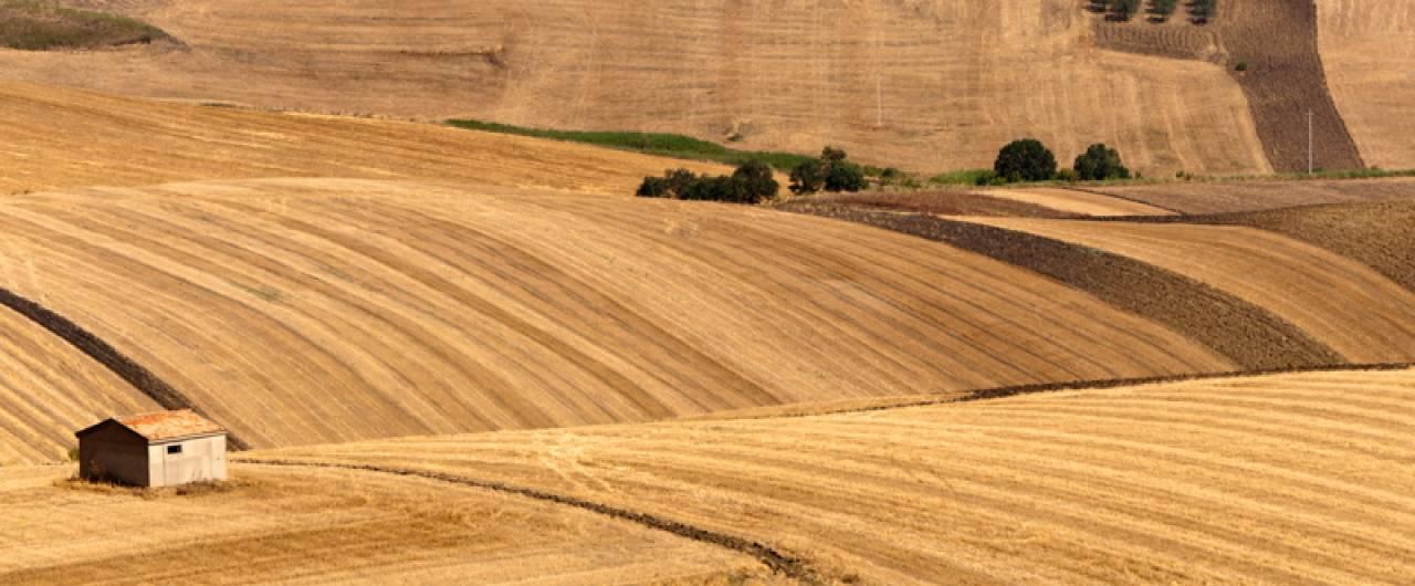 Che cosa fare in Basilicata del nord, tra Melfi, Venosa e Acerenza