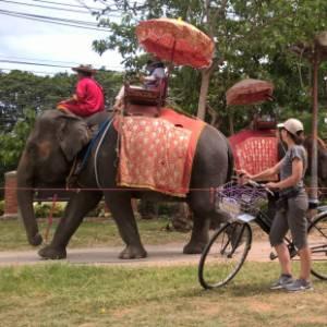 Bangkok in bicicletta. Tra giungla, siti archeologici e bike sharing