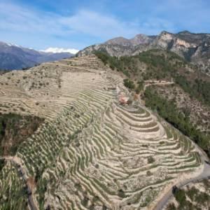 Una storia dalla Liguria: la grande muraglia della Val Roma e il vino che nasce dalla roccia