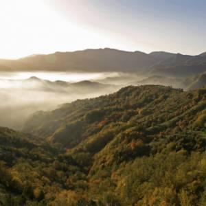 Itinerari, suggestioni e natura selvaggia nel Parco nazionale delle Foreste Casentinesi