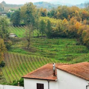 In camper in Irpinia, tra archeologia e paesaggi del vino