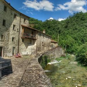 Due idee per vivere la natura a Bagno di Romagna, sull'Appennino di Forlì