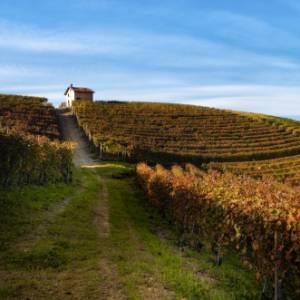Nelle Langhe in camper, sulle strade del vino d'autore