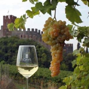Quali sono i migliori vini veneti?