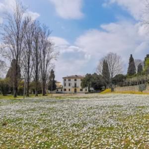 Che cosa fare a Sommacampagna, nel Veronese
