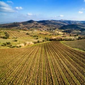 In camper nelle Marche: le grotte di Frasassi e le valli del Verdicchio, antiche abbazie e i borghi Bandiera Arancione