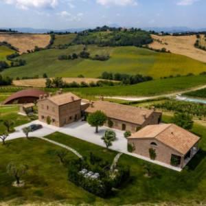 Nelle valli marchigiane del Verdicchio, un progetto di sostenibilità tra cibo e vino